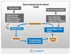 Hormonal Therapies For Adrenal Fatigue Adrenal Fatigue Coach